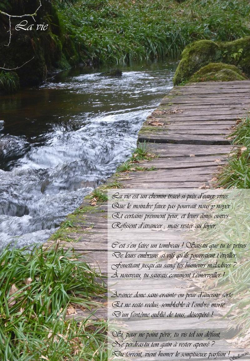 La vie / / La vie est un chemin tracé si près d'eaux vives / Que le moindre faux pas pourrait nous y noyer ; / Et certains prennent peur, et leurs âmes oisives / Refusent d'avancer ; mais rester au foyer, / / C'est s'en faire un tombeau ! Sais-tu que tu te prives / De leurs embruns, si vifs qu'ils pourraient t'éveiller, / Fouettant jusqu'au sang tes humeurs maladives ? / À nouveau, tu saurais comment t'émerveiller ! / / Avance donc sans crainte ou peur d'aucune sorte / Et ne reste reclus, semblable à l'ombre morte / D'un fantôme oublié de tous, désespéré ! / / Si, pour ne point périr, tu vis tel un défunt, / Ne perdras-tu ton gain à rester apeuré ? / Du torrent, vient humer le somptueux parfum ! / / Stellamaris