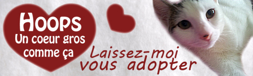 Pétitions pour aider les animaux Hoops-signature-3bf8c68